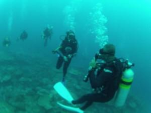 P Diving 2